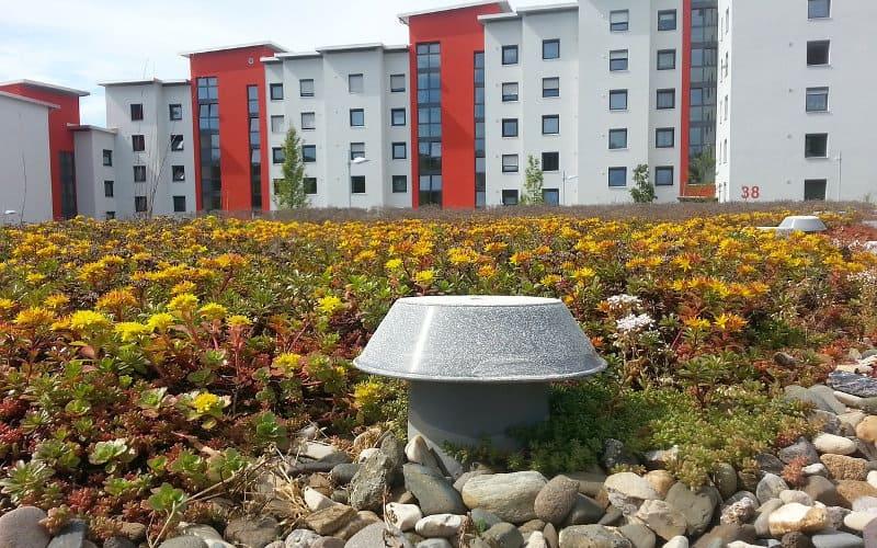 pannelli solari e tetto verde