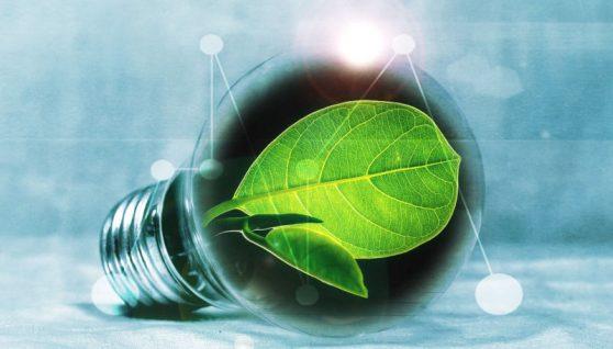 come risparmiare sulla luce