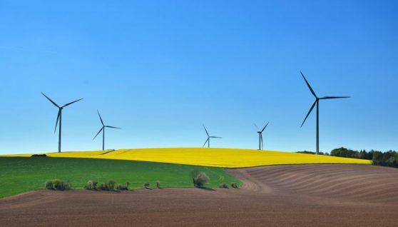 cos'è lo sviluppo sostenibile