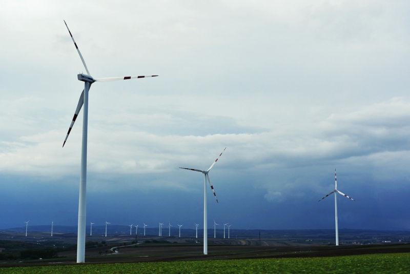 quali sono le fonti rinnovabili